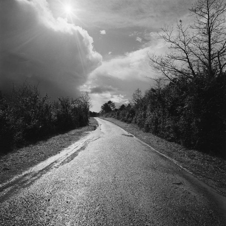 chemin_vers_santenay_bourgogne_402.jpg