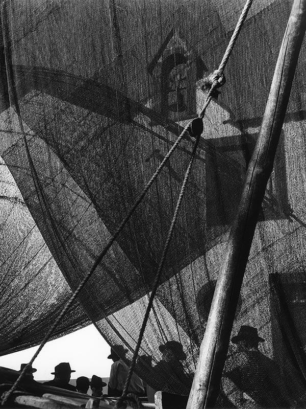 jd-03-Madere-Camara-de-Lobos-1956